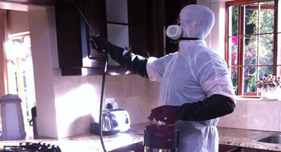 Professional Pest Control in Cape Town